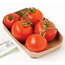 BIO Tomate grappe