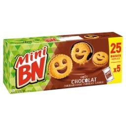 Mini Goût Chocolat Biscuits