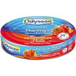 Pilchards harengs à la tomate et à l'huile