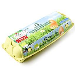 Bio - œufs frais poules élevées en plein air