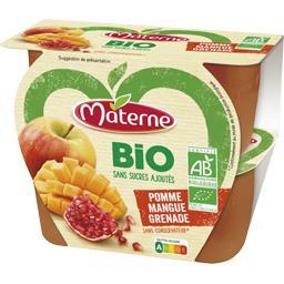 BIO - Spécialité de fruits pomme mangue grenade BIO