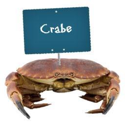 CRABE vivant
