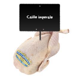 Caille impériale PAC nue