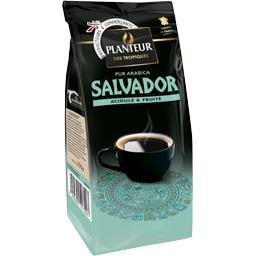 Sélection El Salvador, café moulu