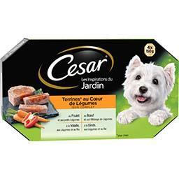 Terrines pour chien au Cœur de Légumes