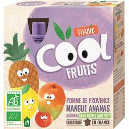 Cool fruits BIO pomme mangue ananas