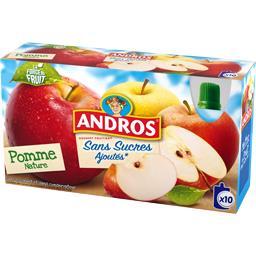 Andros Sans Sucres Ajoutés - Dessert fruitier pomme nature les 10 gourdes de 90 g