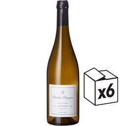 Vin de France Sauvignon Châtelain Desjacques vin Blanc sec