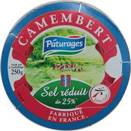 Camembert réduit en sel