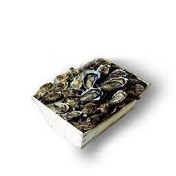 Huîtres fines de claire verte MARENNES OLERON LABEL ROUGE N°3
