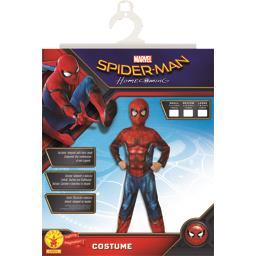 Costume Spider-Man small