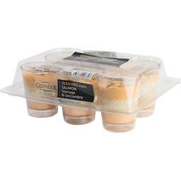 Verrines saumon fromage & concombre