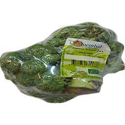 Croquembal Chou brocoli bio Le sachet de 500 gr