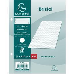 Fiches bristol blanches perforés 170x220 5x5 205 g
