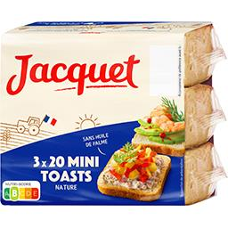 Les Minis Toasts nature