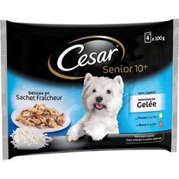Sélection en gelée poulet/bœuf riz pour chiens Senio...