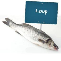Loup ( poisson entier)