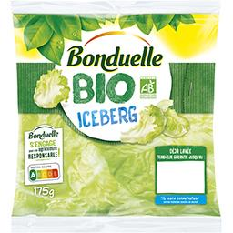 Iceberg BIO