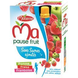 Ma Pause Fruit Spécialité de Pomme Fraise Framboise sans Sucres Ajoutés 4 x 120 g - Lot de 6