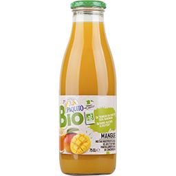 Nectar mangue BIO