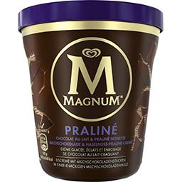 Crème glacée praliné