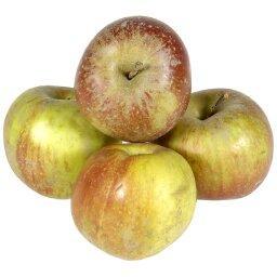 Pommes REINETTES ARMORIQUE