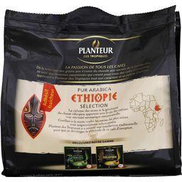Sélection Ethiopie, dosettes de café pur arabica