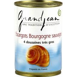 Escargots bourgogne sauvages