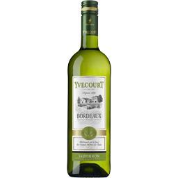 Bordeaux Sauvignon