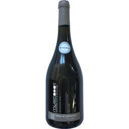 Muscadet fût de chêne, vin blanc