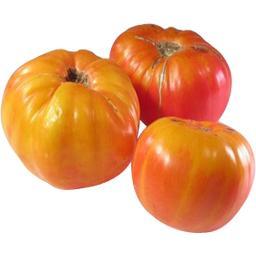Tomates CÔTELÉE JAUNE
