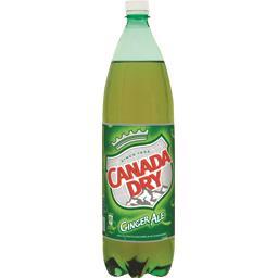 Soda Ginger Ale aux extraits naturels de gingembre