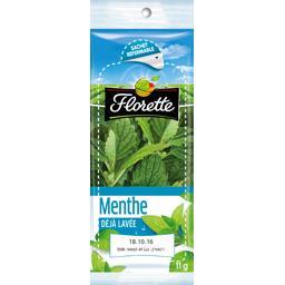 Florette Menthe