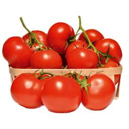 Tomates COKTAIL EN GRAPPE