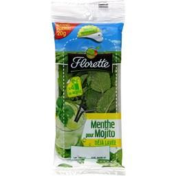 Menthe pour Mojito