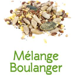 Mélange boulanger BIO en VRAC