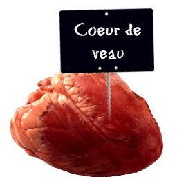 Coeur de VEAU