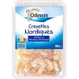 Crevettes nordiques