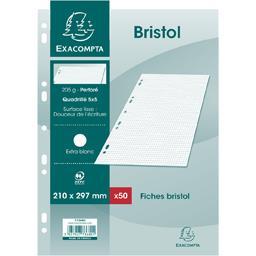 Fiches bristol blanches perforés 210x297 5x5 205 g
