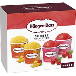 Mini pot Sorbet Collection mangue/framboise