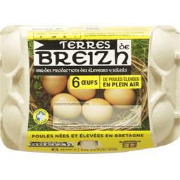 Terres de Breizh Œufs de poules élevées en plein air la boite de 6 œufs