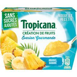 Spécialité de fruits Evasion Gourmande sans sucres a...
