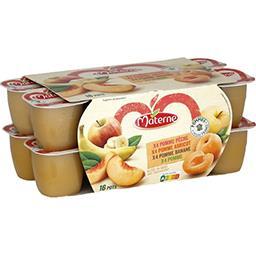 Materne Assortiment de compote de pomme/pêche/abricot/banane les 16 pots de 100 g