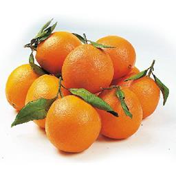 Orange FEUILLE