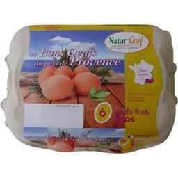 Les bons œufs du pays de Provence