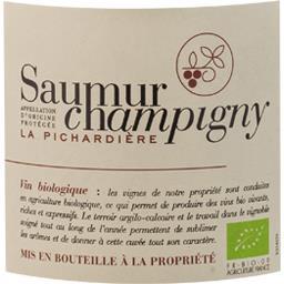 Saumur Champigny La Pichardière BIO, vin rouge
