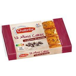 Minis cakes aux pépites de chocolat