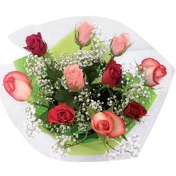 Roses et gypsophile