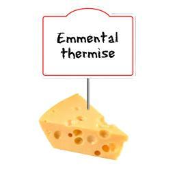 Emmental thermise 29% de MG