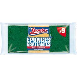 Eponges grattantes Stop Graisse